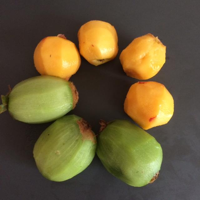 Kiwi Fruit & Peach Yoghurt Ice Blocks