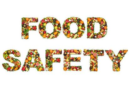 Family Food Safety